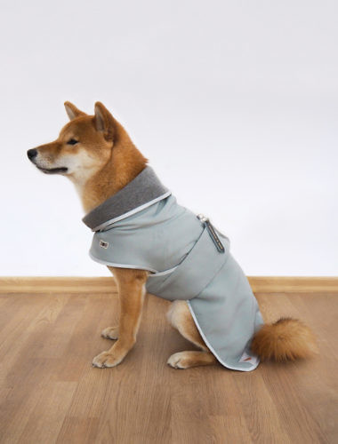 Warm dog coat